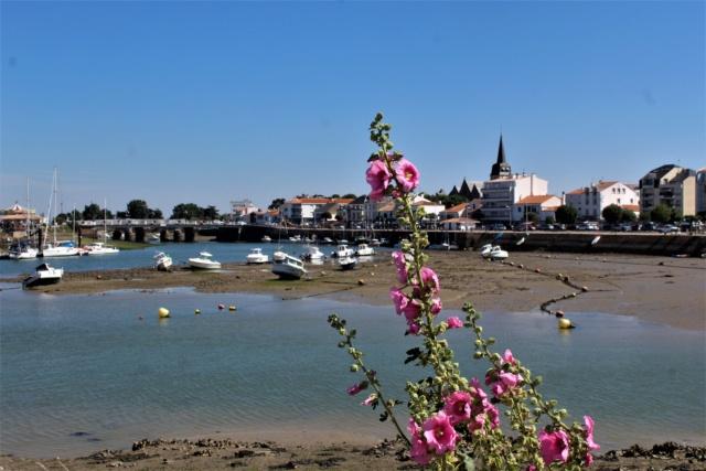 Saint-Gilles-Croix-de-Vie (Vendée, 85). Img_6022