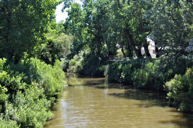 Saint-Gilles-Croix-de-Vie (Vendée, 85). Img_6039