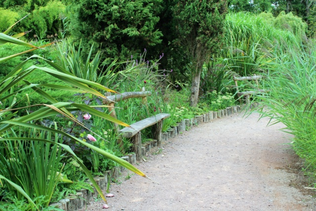 Parc Floral de la Court d'Aron (Vendée - 85) Img_6218