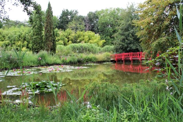 Parc Floral de la Court d'Aron (Vendée - 85) Img_6222