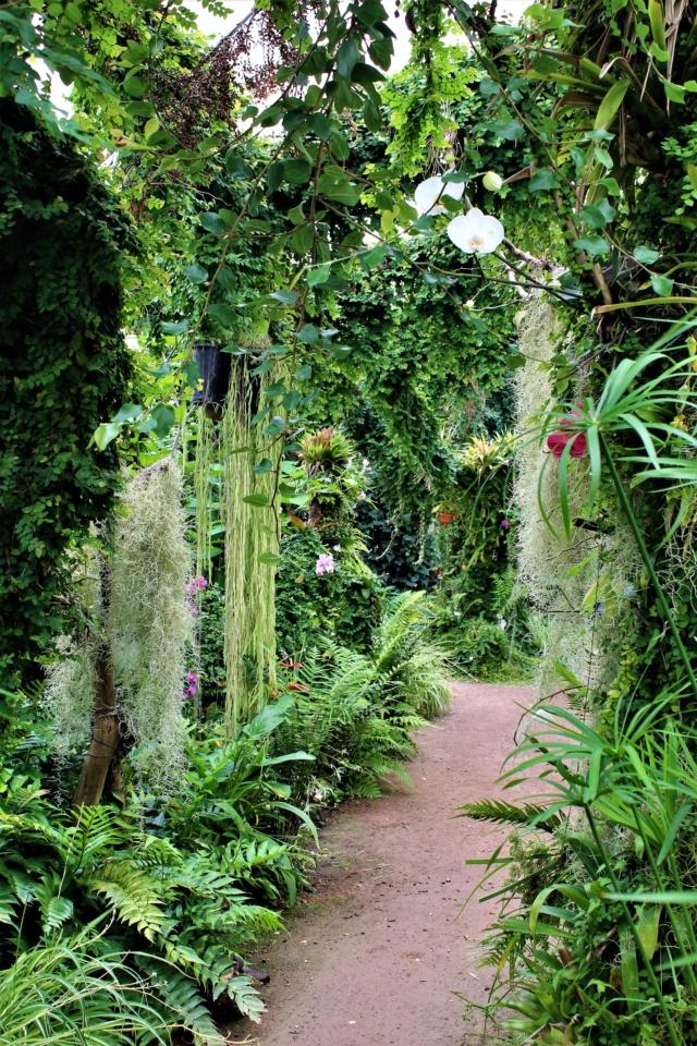 Parc Floral de la Court d'Aron (Vendée - 85) Img_6225