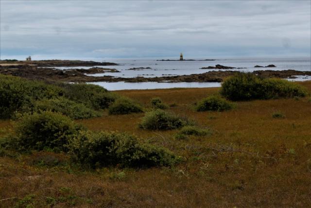 Île d'Yeu (Vendée -85). Img_6314