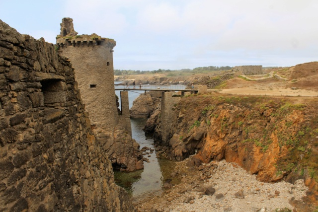 Île d'Yeu (Vendée -85). Img_6323