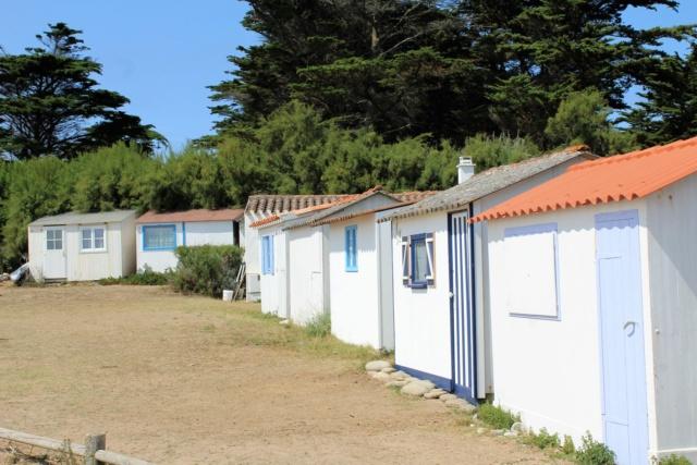 Île d'Yeu (Vendée -85). Img_6414