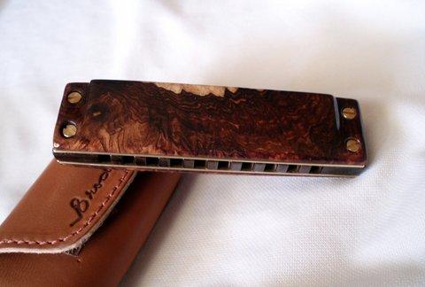 Les harmonicas BRODUR - Page 7 P1010013