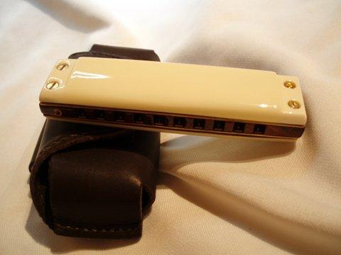 Les harmonicas BRODUR - Page 7 P1010020