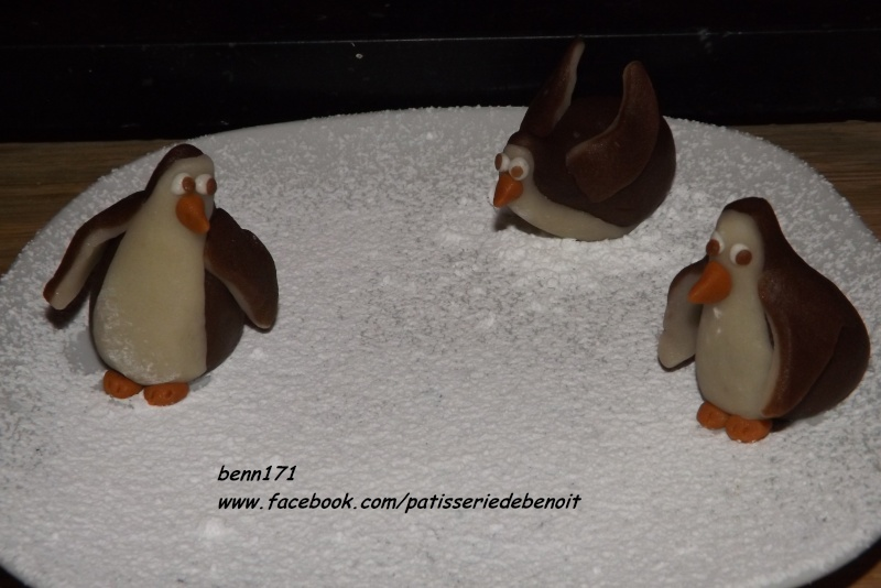 pingouin - Page 2 Dscf3710