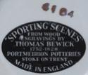 Portmeirion Pottery Sporti11