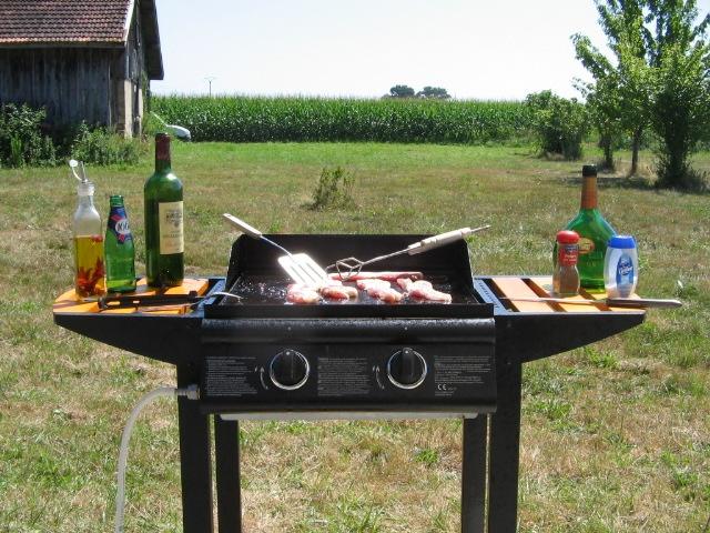 """camping à """"la ferme"""" dans le sud ouest cet été - Page 3 Grilla10"""