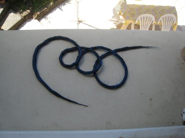 1ères dreads Img_7312