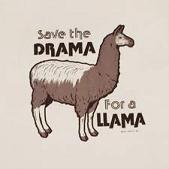 No Drama Mamas