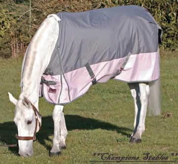 Horser Cookie  2284_110