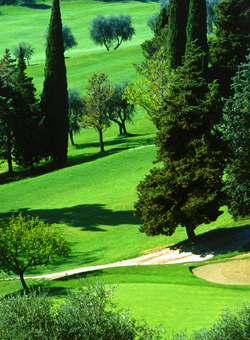 Golf and Country Club Pic_go10