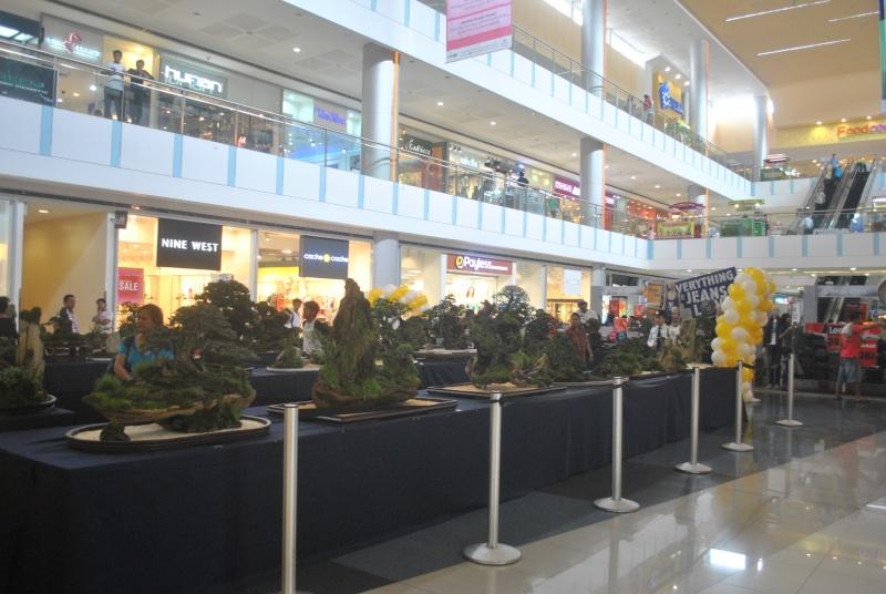 Penjing show Dsc_0123