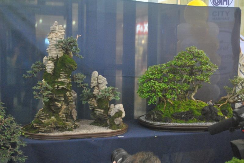 Penjing show Dsc_0138