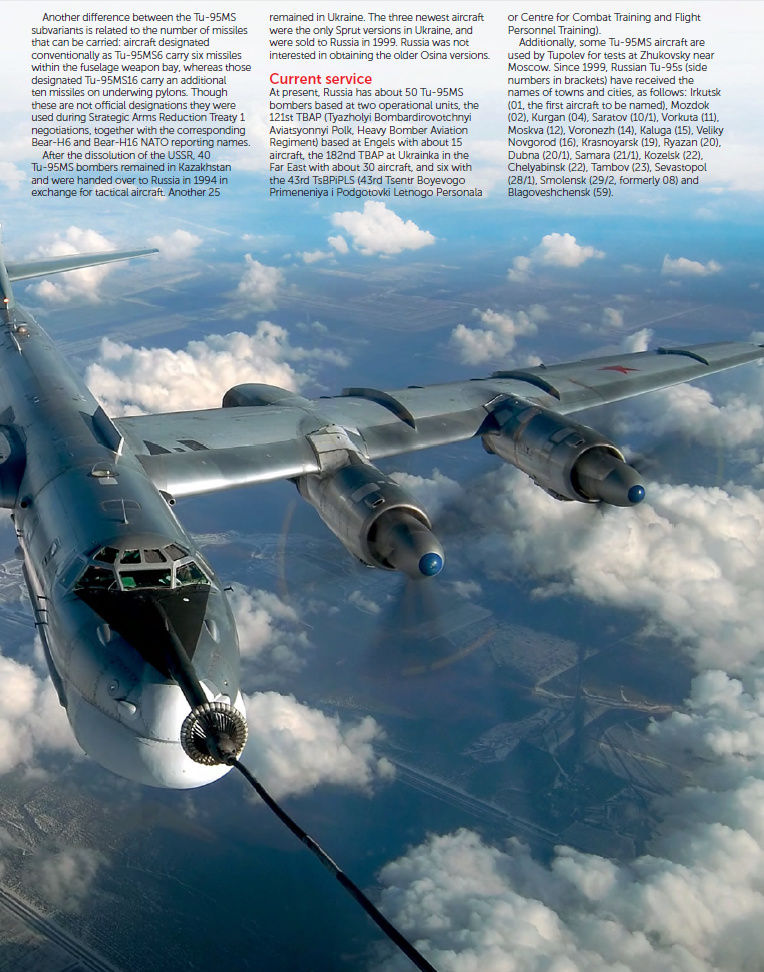 "Tu-95MS ""Bear"" - Page 6 Bears-10"
