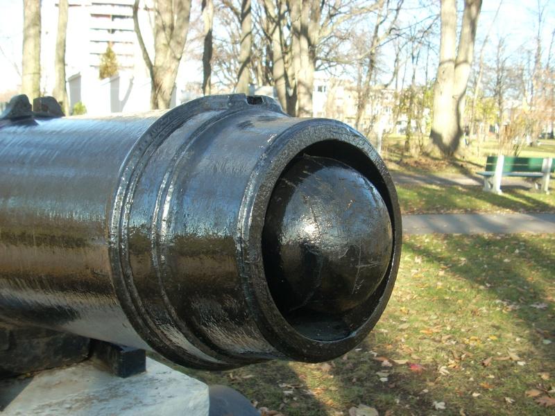 Caronade et mortier (projet de construction) - Page 5 Dscn4011
