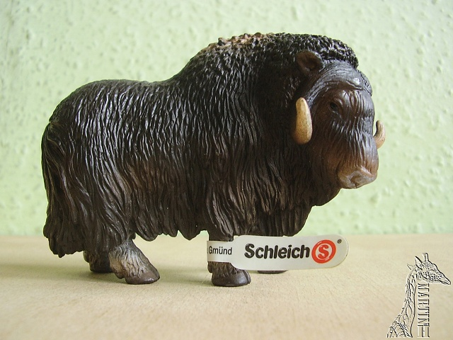 Martin's Schleich newcomers! - Page 2 P1010288