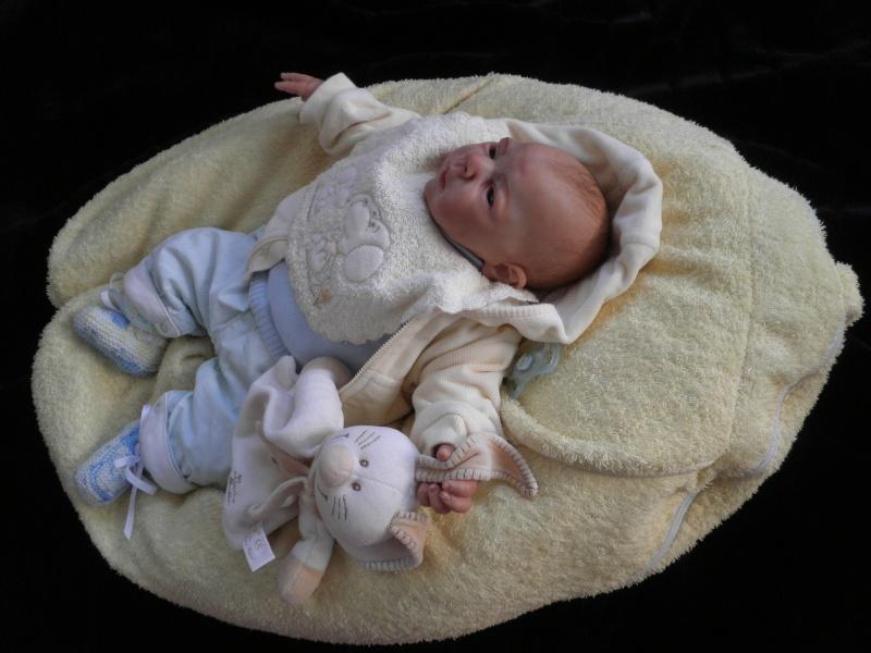 """naissance à la """"nurseriedelacigogne""""  - Page 4 P1201218"""