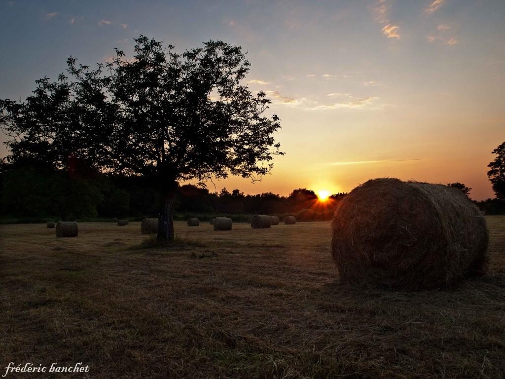 coucher de soleil campagnard Couche10