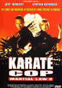 Affiches Films / Movie Posters  COP (FLIC) Karate10