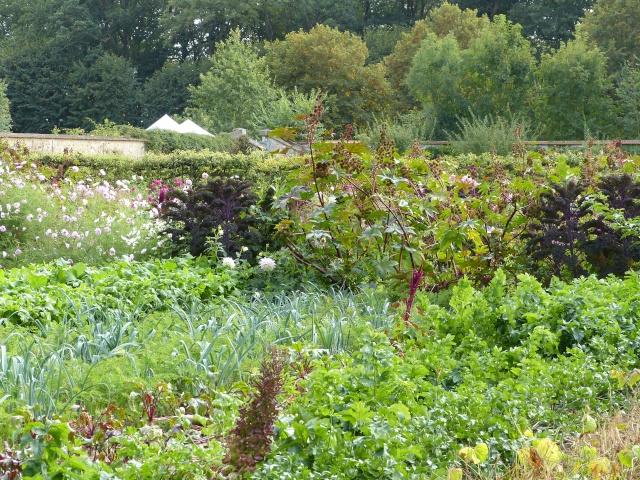 Fête des plantes à Saint Jean de Beauregard P1020313