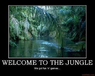 Džungla forum - zajebancija do daske