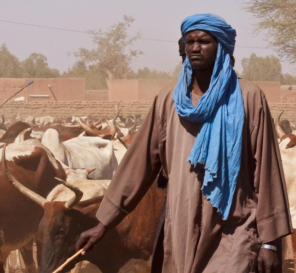 le Sahel zone de non-droit - Page 27 File-210