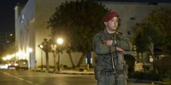 Armée Tunisienne / Tunisian Armed Forces / القوات المسلحة التونسية - Page 14 Tunisi10