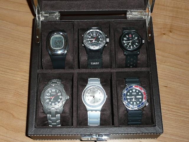 Quelle montre choisir ?  P1020610