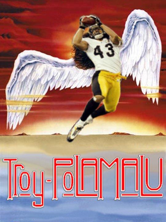 Troy Polamalu 16895110