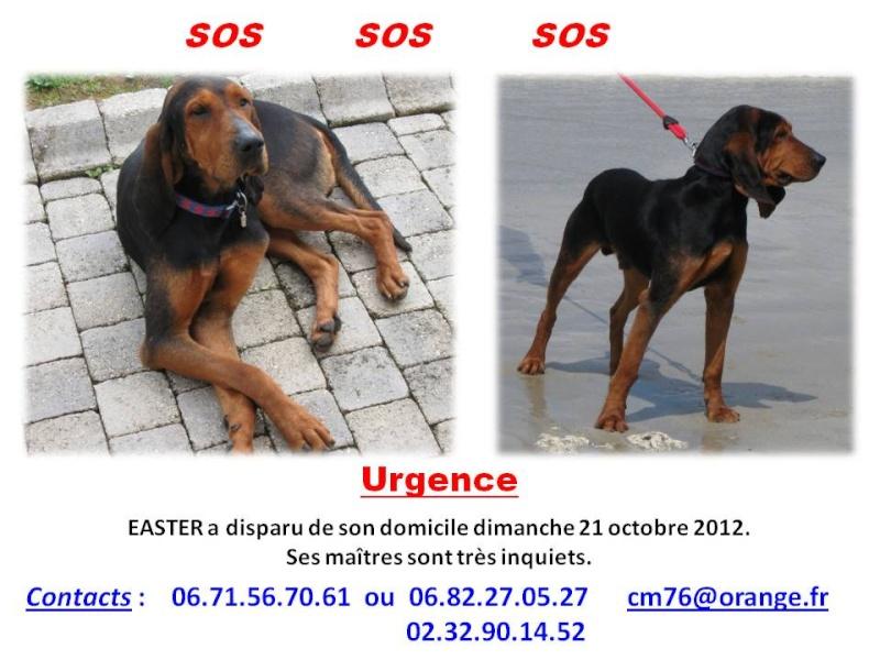 (hommage) EASTER Bruno du Jura Easter11