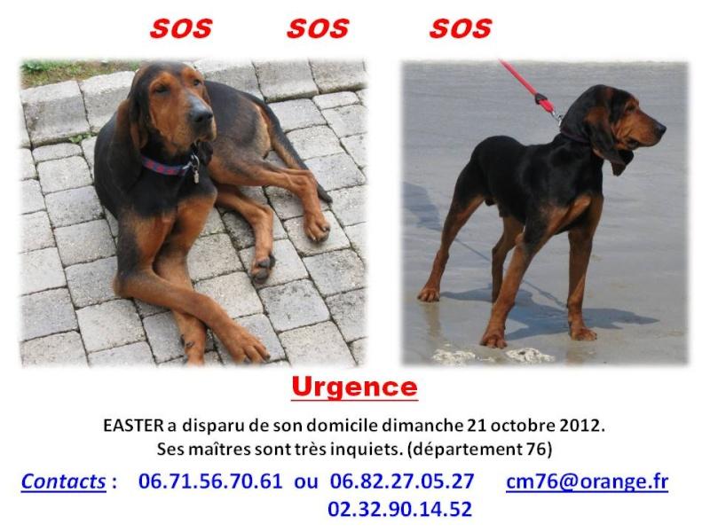 (hommage) EASTER Bruno du Jura Easter12
