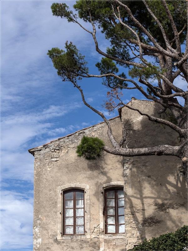 Vaucluse: Bonnieux Lr4-p919