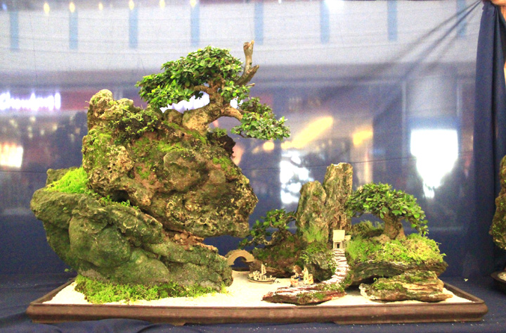 Penjing show - Page 2 _mg_2214