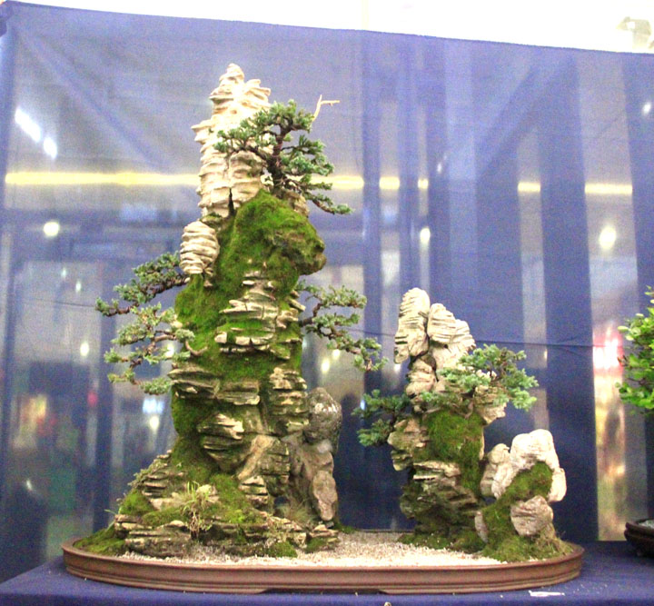Penjing show - Page 2 _mg_2217