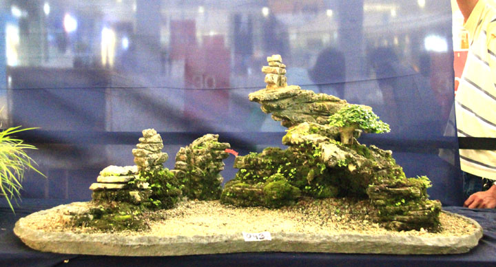 Penjing show - Page 2 _mg_2315