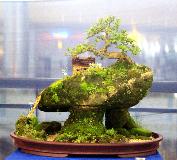 Penjing show - Page 2 _mg_2319