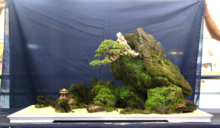 Penjing show - Page 2 _mg_2326