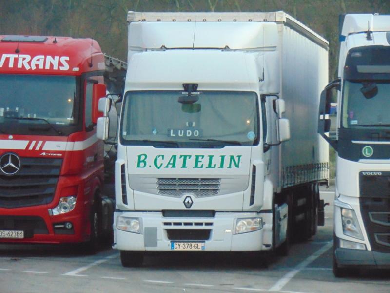Catelin (Saint Herblon, 44) Dsc00154