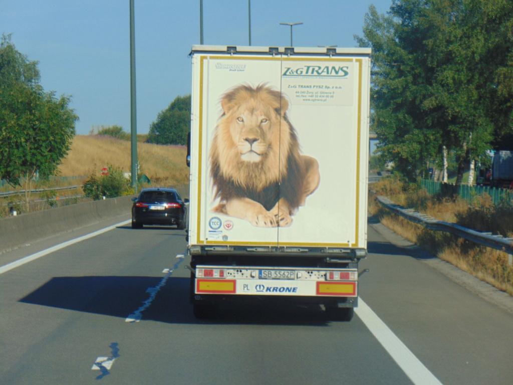 La publicité sur les camions - Page 35 Dsc01234