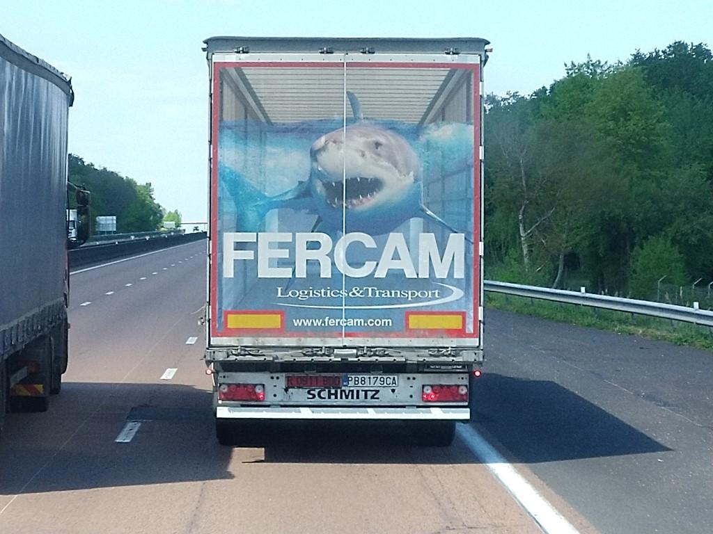 La publicité sur les camions  - Page 40 Img_2234