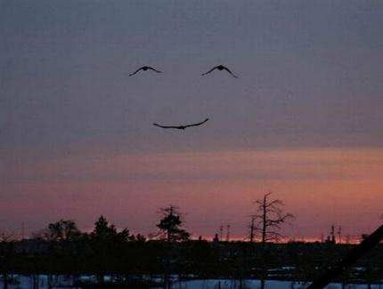 Quand le ciel sourit... L_envo10