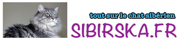 Sibirska.fr LE RETOUR ! Bannze10