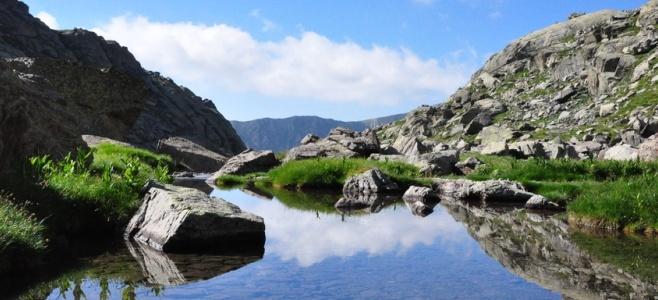 Une escapade dans le Parc national du Mercantour Reed5810