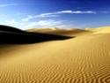 Красота Пустыни 310