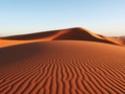 Красота Пустыни 410