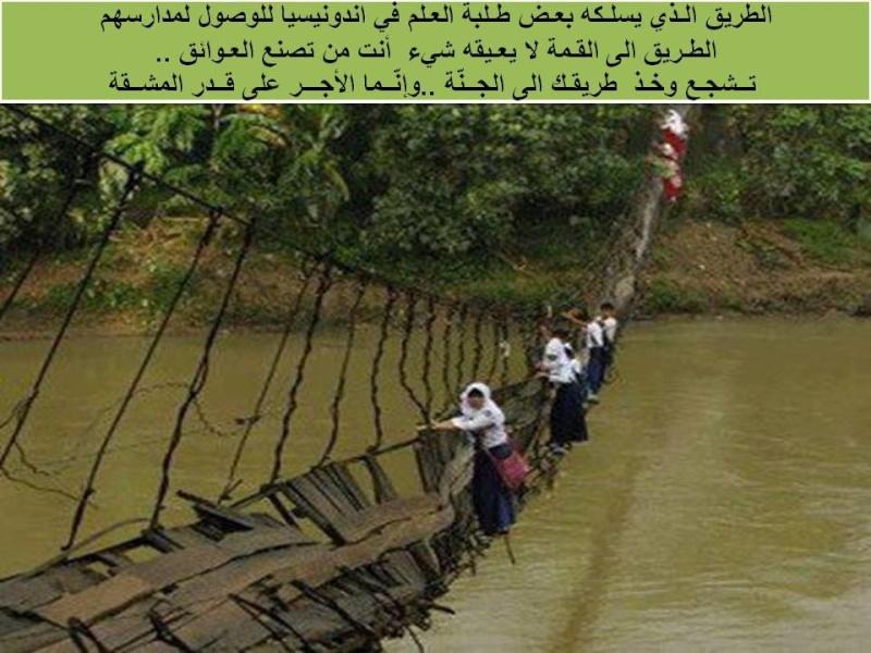 صورة و تعليق - Page 5 55766110