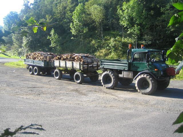 unimog mb-trac wf-trac pour utilisation forestière dans le monde - Page 20 28570111