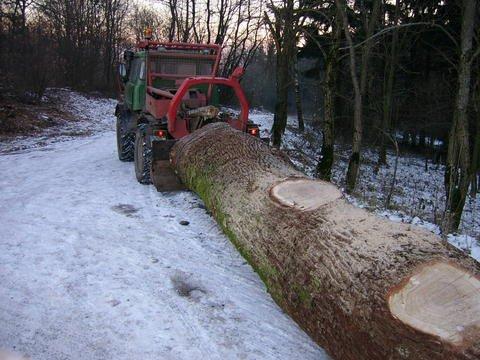 unimog mb-trac wf-trac pour utilisation forestière dans le monde - Page 20 28570411